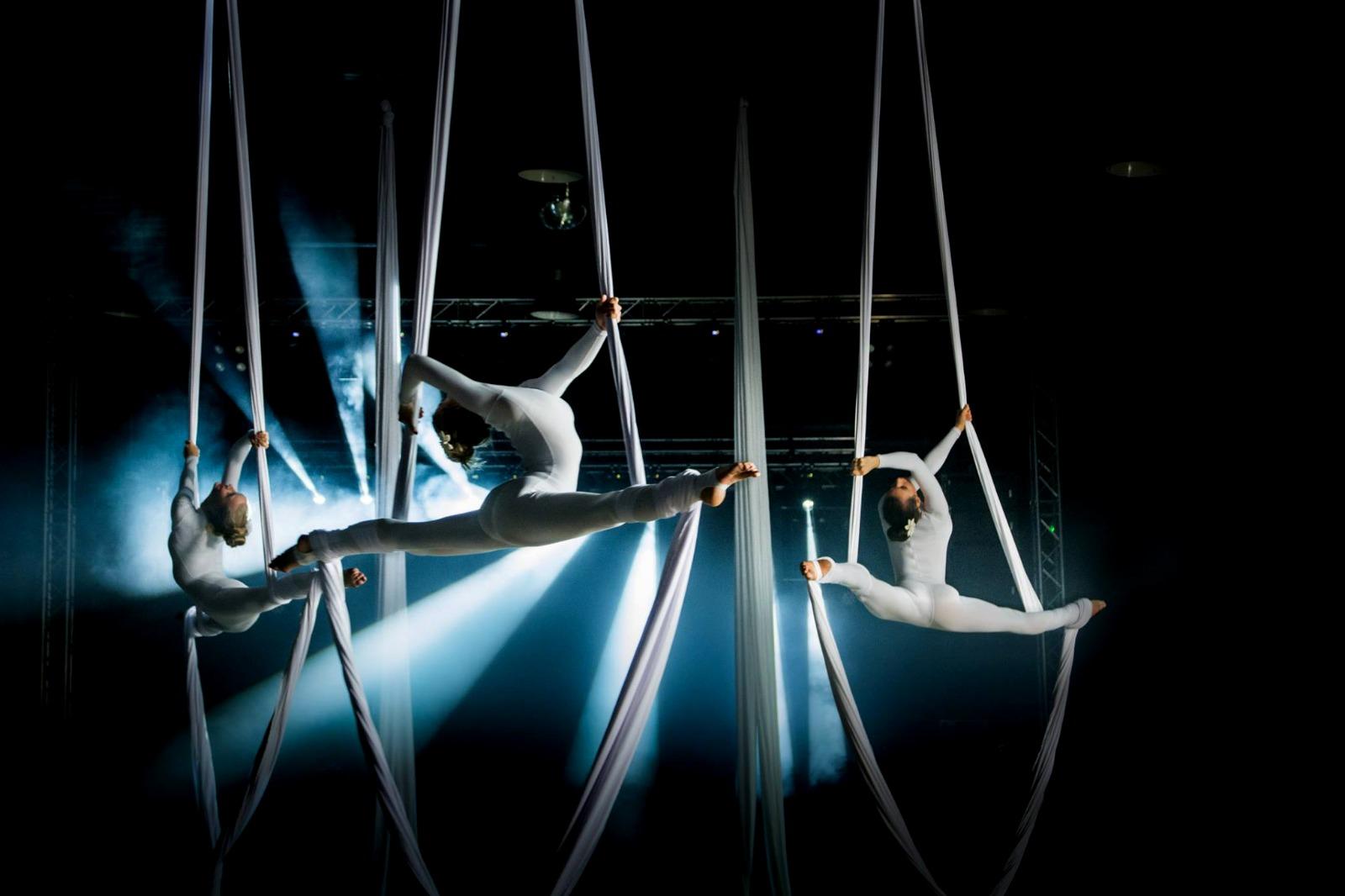 Aerial & Light Show by Vertigo